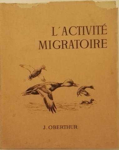 « L'activité Migratoire » - J. Oberthür....