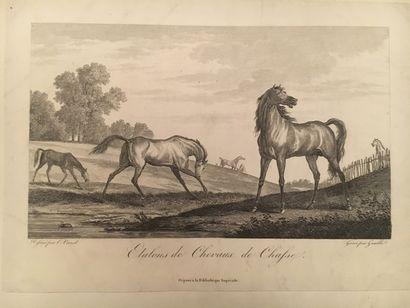 Recueil de 20 gravures de Carle Vernet sur...