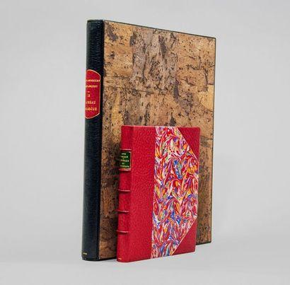 TAUREAUX DE CAMARGUE. Ensemble 2 ouvrages....