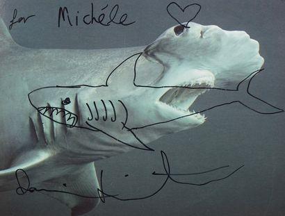 Damien HIRST (1965)  Shark  Dédicace au feutre...