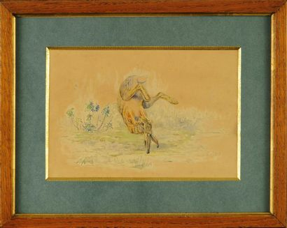 Édouard Paul MÉRITE (1867-1941) Lièvre tombant...
