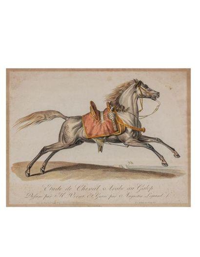 Horace VERNET (1789-1863), d'après. Étude...