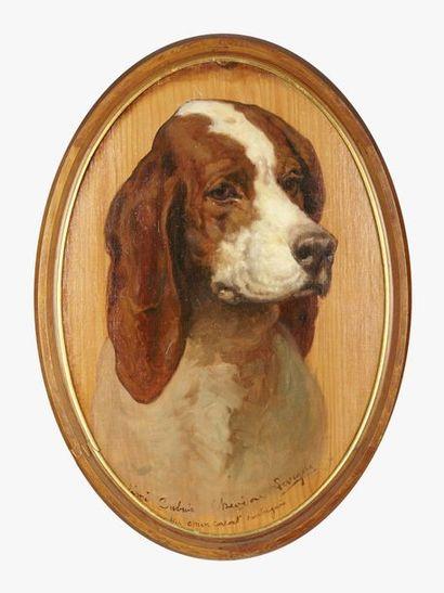 Théodore LEVIGNE (1848-1912) Portrait de chiens : Épagneul et Saintongeais Paire...