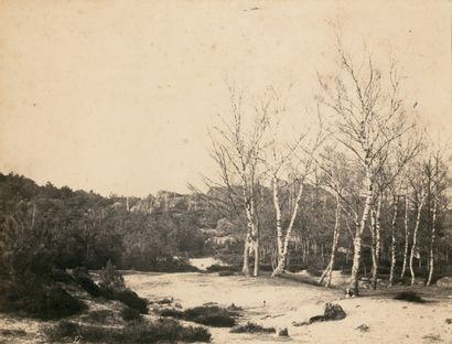 Eugène CUVELIER (1837-1900) Forêt de Fontainebleau,...