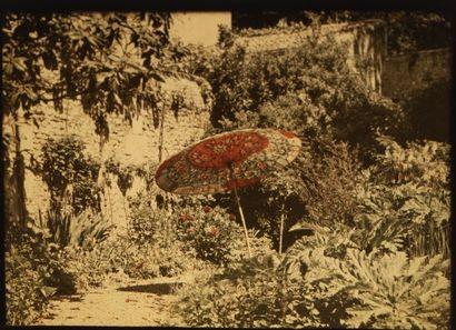 Autochrome Ombrelle, c. 1917 Plaque 9 x 12...