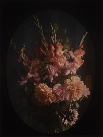 Autochrome Bouquet de fleurs rouges, c. 1917...