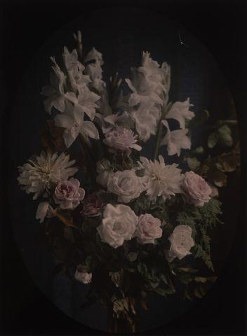 Autochrome Bouquet de fleurs blanches, c....