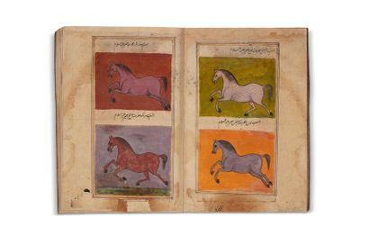 Salihotra (ou Salhutar) / Traité sur l'équitation...