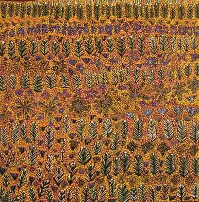 Margaret Ross Kemarre (1966 - ) Bush Flowers...