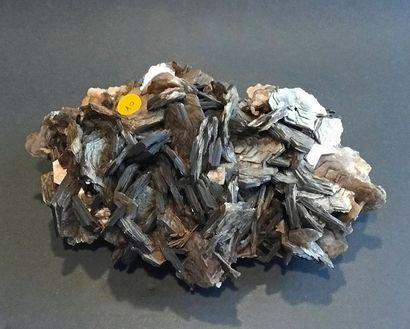 Muscovite du Brésil (22 x 15 x 10 cm) : élégant...