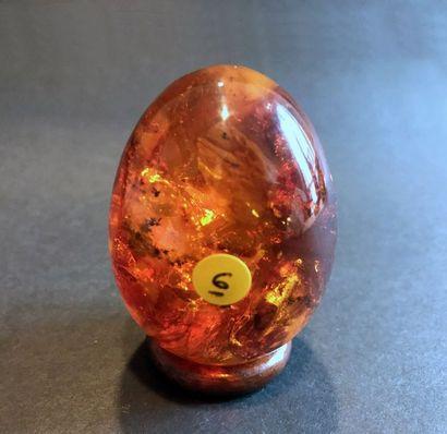 Copal / ambre: œuf poli avec inclusions,...