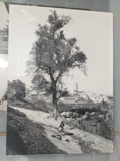 GRAVE Charles (1882-1951).  Paysage du Maroc....