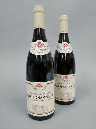 2 bouteilles GEVREY-CHAMBERTIN Bouchard P&F...