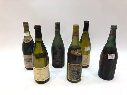 6 bouteilles VINS DIVERS
