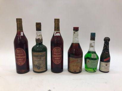 Ensemble de 5 bouteilles  2 bouteilles PINEAU...