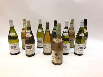 Ensemble de 11 bouteilles   1 bouteille...