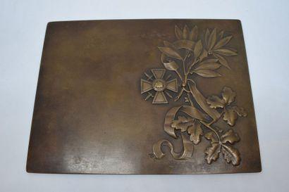 [ ARTHUS BERTRAND ]  Plaque en bronze à patine...