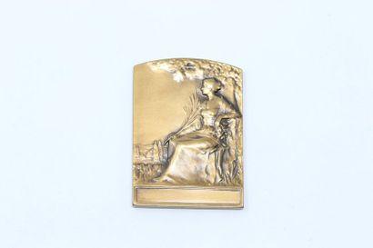 René Baudichon  Médaille en bronze représentant...