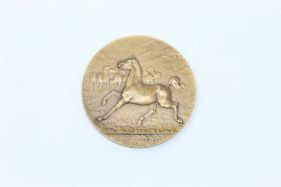 Constantin CRISTESCO  Médaille uniface représentant...