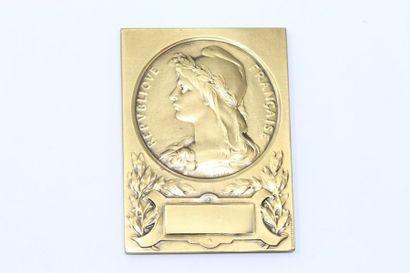 O.ROTY.  Médaille en bronze à patine doré...