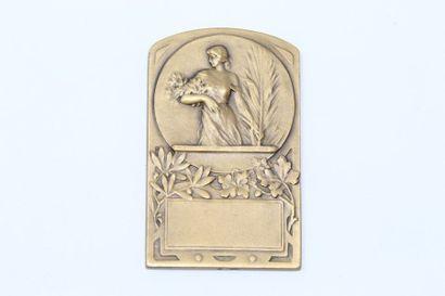 Plaque commémorative uniface en bronze à...