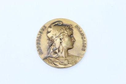 Rivet  Médaille uniface en bronze à patine...