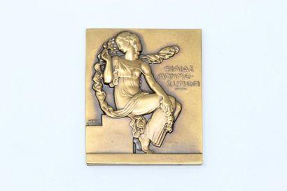 Jean Vernon  Plaque en bronze à patine doré...