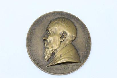P.M DAMMANN  Médaille en bronze à patine...