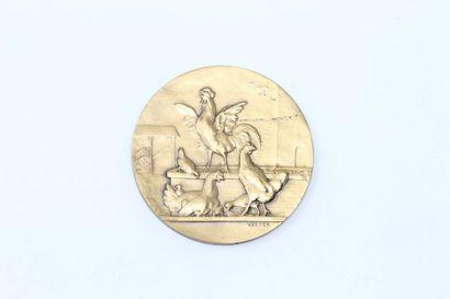 V.Peter  Médaille en bronze à patine doré...