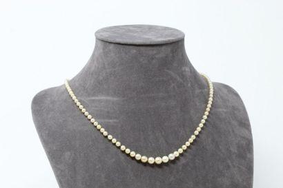 Collier de cent perles fines en chute, le...