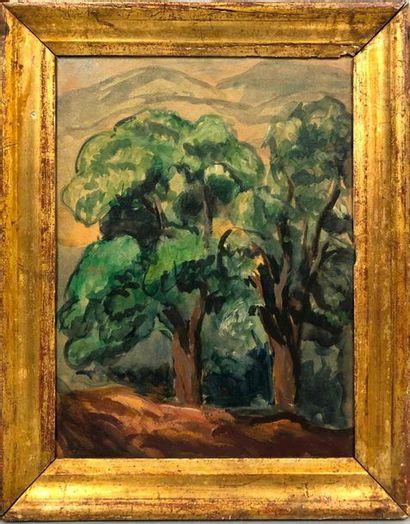 GIRIEUD Pierre, 1876-1948,  Études d'arbres,...