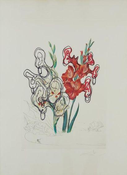 DALI Salvador, 1904-1989  Gladiolus cum aurium...