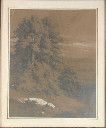 ECOLE MODERNE  Paysage de montagne?  mine de plomb sur papier gris, rousseurs,  signature...