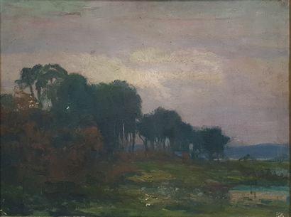 ZEZZOS Georges (1883-1959)  Paysage aux arbres...