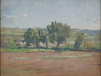 ZEZZOS Georges (1883-1959)  Les arbres  Huile...