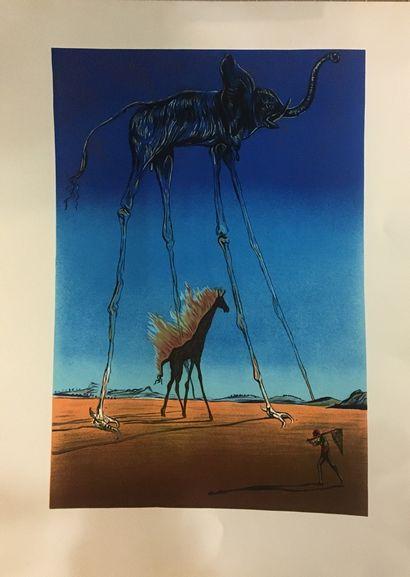 DALI Salvador, d'après  Eléphant  Lithographie, non signée  76 x 55.5cm.