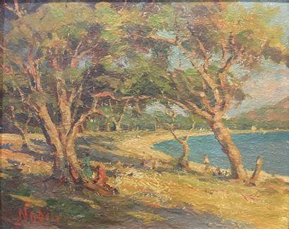 NOBILI, fin XIXe début XXe,  Bord de mer,  huile sur carton, signé à gauche,  32x40...