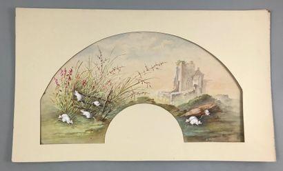 Fleurs, début du XXe siècle  Trois projets...