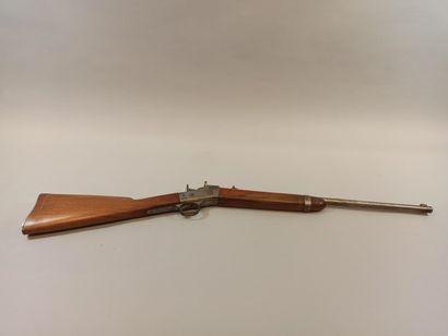 Carabine Remington CAL 41, Modèle ROLLING...