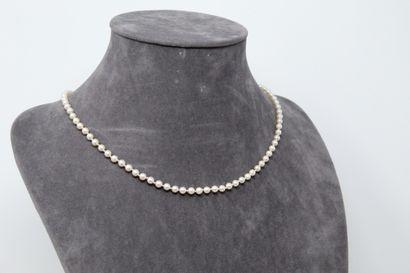 Collier de perles choker, fermoir en or jaune...