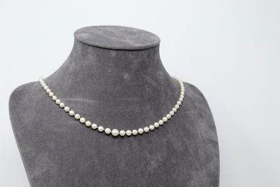 Collier de perles en chute, fermoir en or...