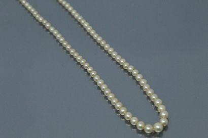 Collier de perles en chute. Fermoir en or...