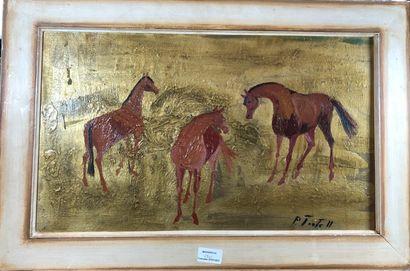 TORTELL P.  Étude de chevaux  Huiles sur...