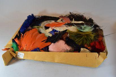 Ensemble de plumes dont motif déco