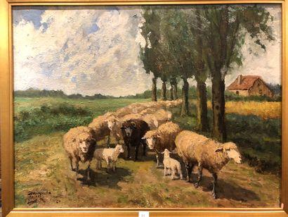 HEIGEL Rodolphe  Les moutons  huile sur toile,...