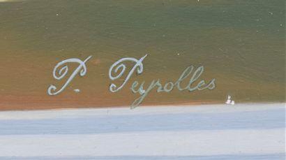 PEYROLLE Pierre (XX)  AIR FRANCE, envol de Concorde devant l'aéroport Charles de...