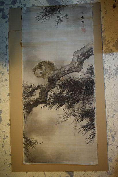 JAPON, XXème siècle  Jeune hibou sur vieille...