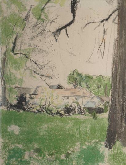 VUILLARD Édouard, 1868-1940  Les Sapins -...