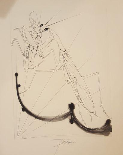 TREMOIS Pierre-Yves (né en 1921)  Insecte...