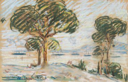 AUGUSTE PÉGURIER 1856 - 1936 JUAN-LES-PINS, L'ESCADRE AU GOLFE JUAN, 1903 pastel...